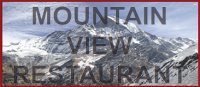 MountainviewLogo (1).png