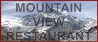 MountainviewLogo (1).png